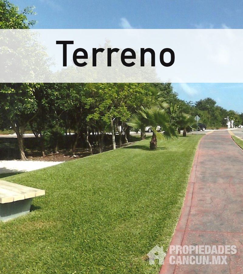 Terreno Gallery Download Cv Letter And Format Sample Letter